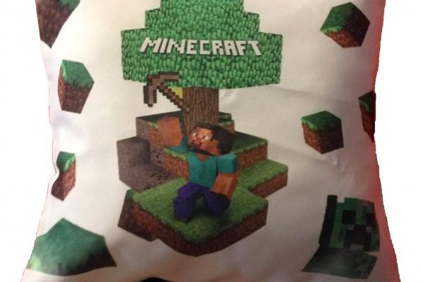 COJ-Minecraft-001